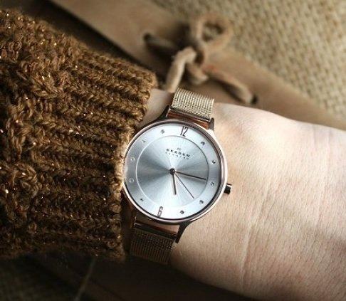 Best skagen watch for lady under 10000