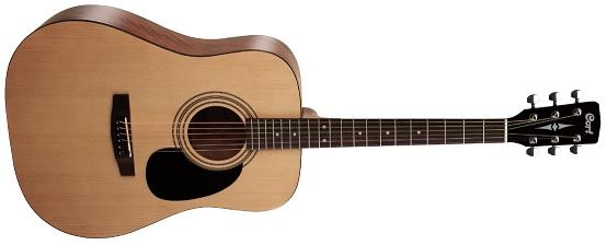 Best acoustic guitars under 10000