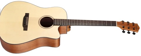 Best acoustic guitar in India